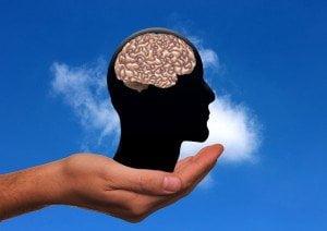 0_brain
