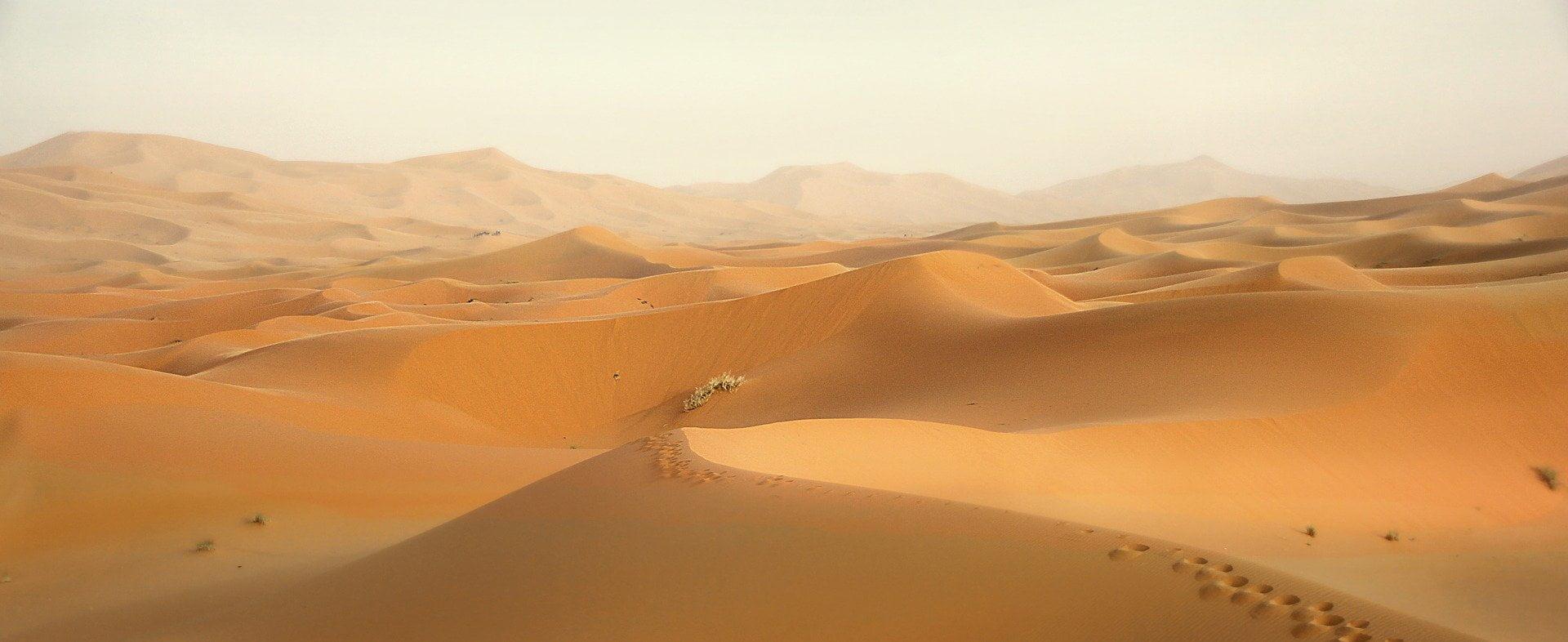 illustration album Dune
